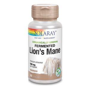 Melena de León 500 mg.60 caps.